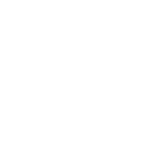 Julie Furlong Notes